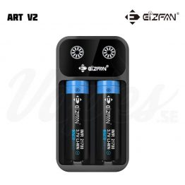Eizfan Art V2 Batteriladdare